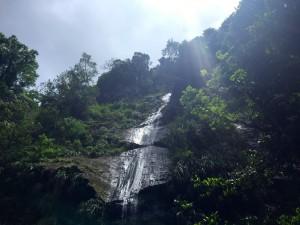 cascade Anse couleuvre Martinique