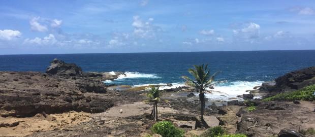 Presqu'Île de la Caravelle en Martinique